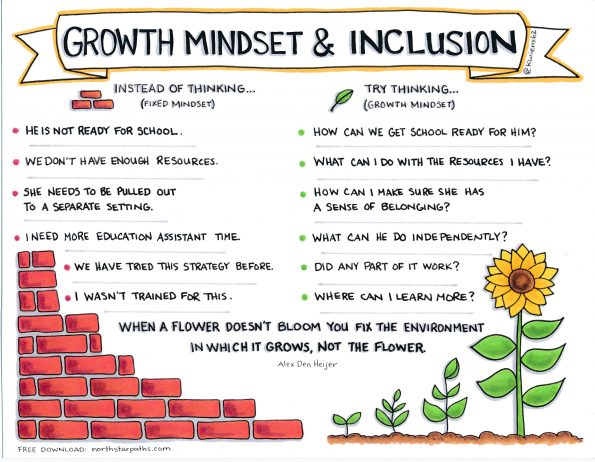 Growth mindset and inclusion graphic reproduced with kind permission from North Star Paths