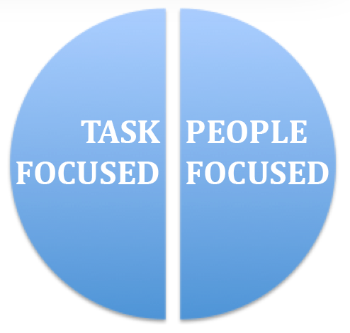 DISC people and task focus
